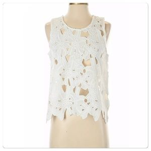 NWT, Anthropologie, White Lace Cropped Top!